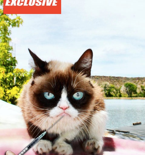 Grumpy Cat: Addicted to BOTOX!